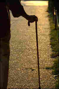 Detail of an elderly person's hand on a cane, with a street visible in the foreground.