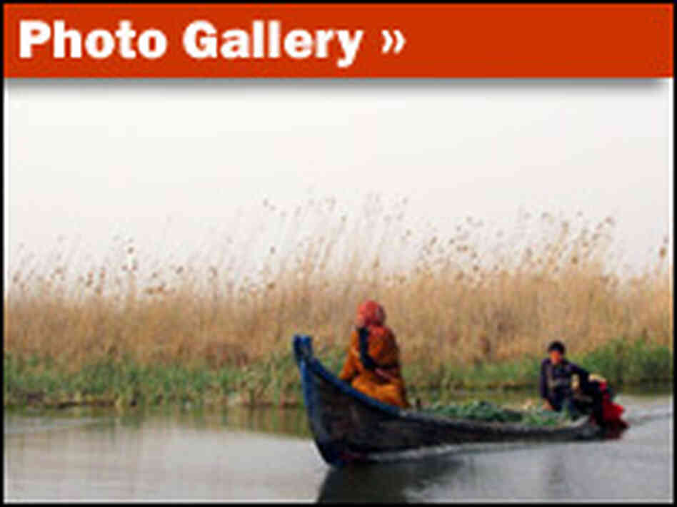 Marsh Arabs gallery