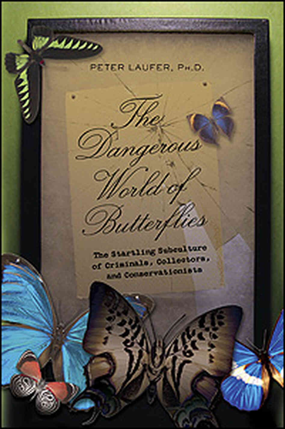 'The Dangerous World Of Butterflies' Cover