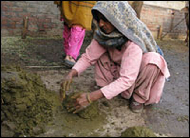 Sharma's wife forms patties out of cow dung in the courtyard of the family's compound. After the patties dry, the family uses them to fuel their cooking fires.