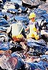 Exxon Valdex Spill
