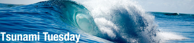 Tsunami Tuesday