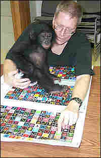 Ethnographer Bill Fields and his bonobo friend Nyota