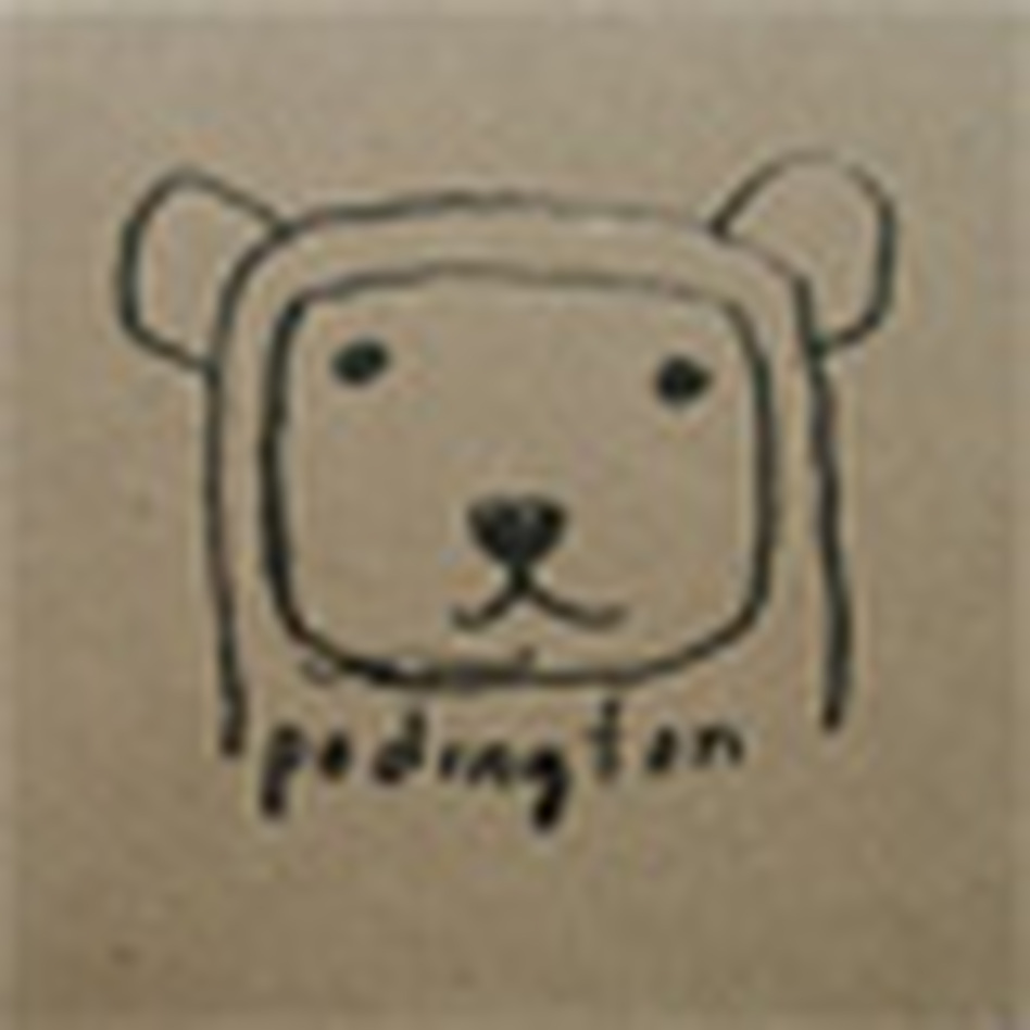 cover for podington bear