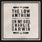 cover for the low anthem