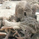 Human remains just exumed from a mass grave near Haila, Iraq.