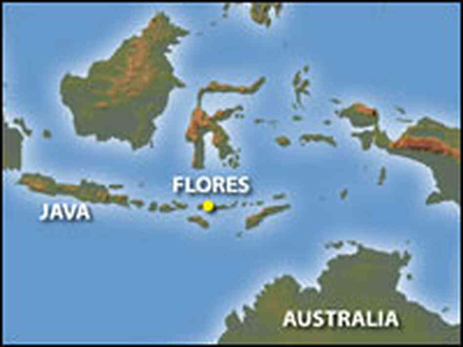 Map indicating where Flores Is