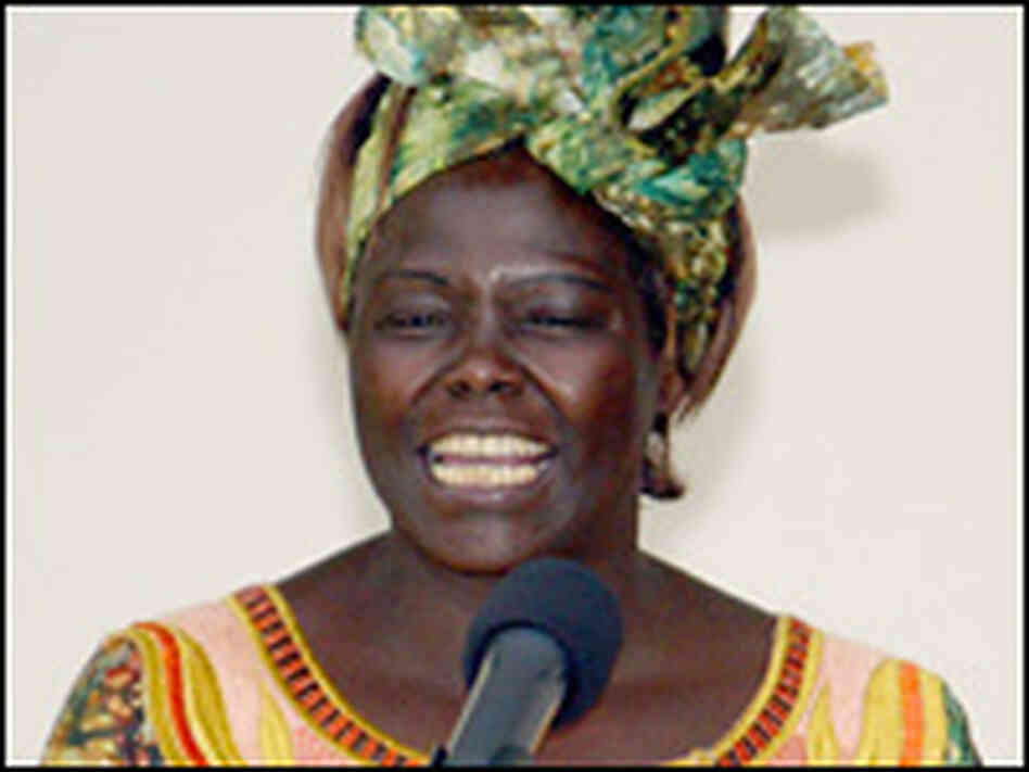The 2004 Nobel Peace Prize winner,  Kenya's Wangari Maathai.