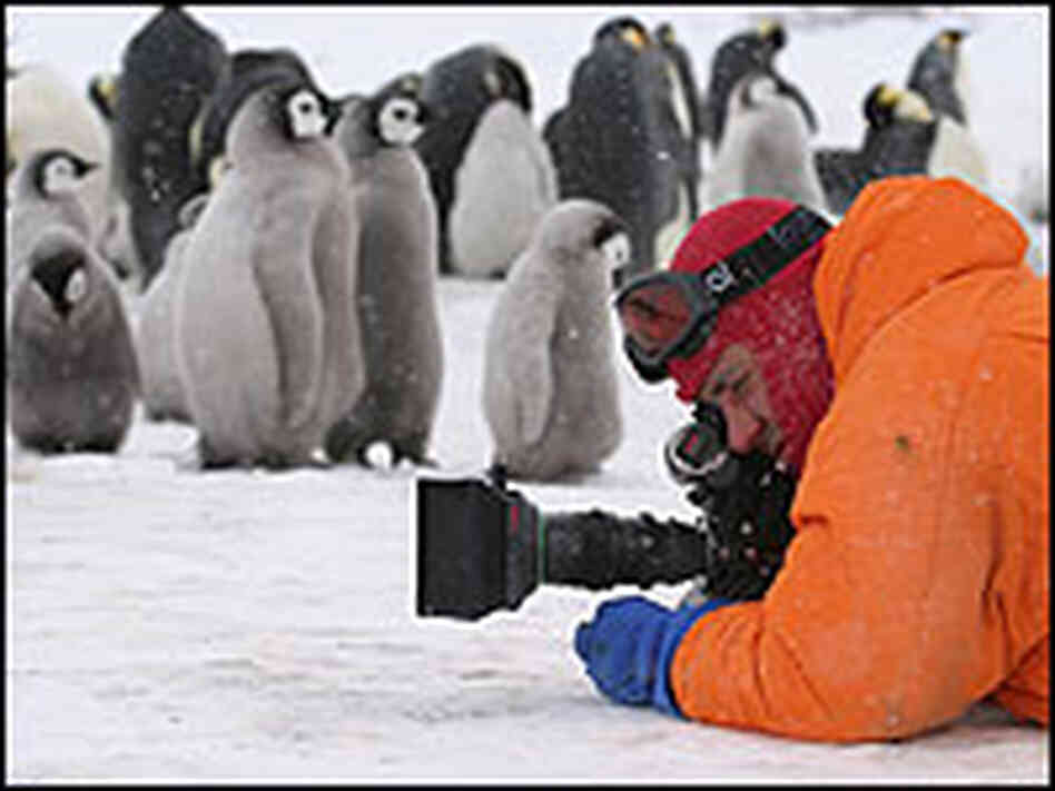 Photographer and penguin.