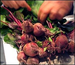 Mark Bittman prepares to separate freshly picked beets from their red stems and green leaves.