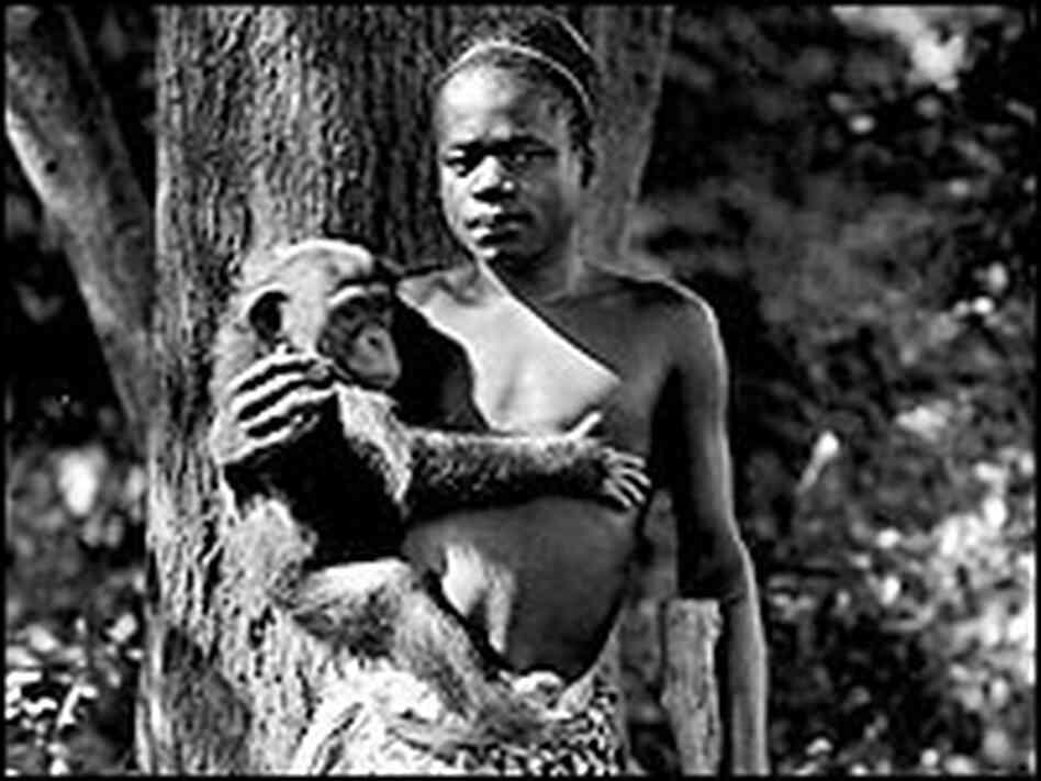 African Pygmy Thrills, 1930s