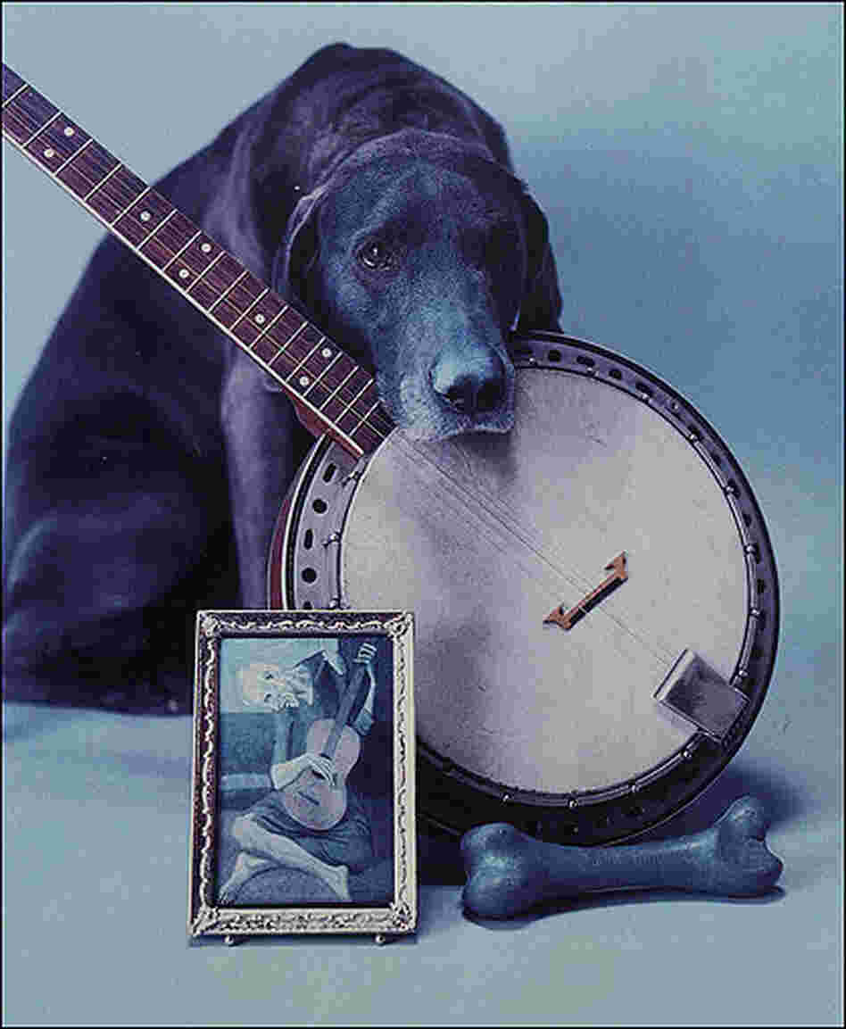 Photographer William Wegman with his distinctive take on the banjo.