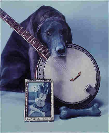 Photographer William Wegman with his distinctive take on the banjo.