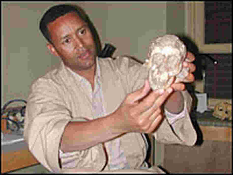 Dr. Zeresenay Alemseged with skull
