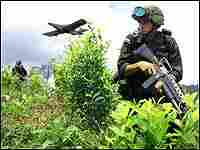 A Colombian soldier advances in a field of coca, while a plane sprays a defoliant over the crop.