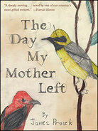 Cover of 'The Day My Mother Left'