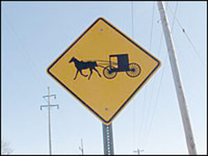 Horse and buggy sign