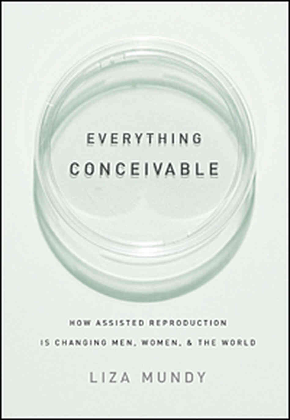 'Everything Conceivable' Cover