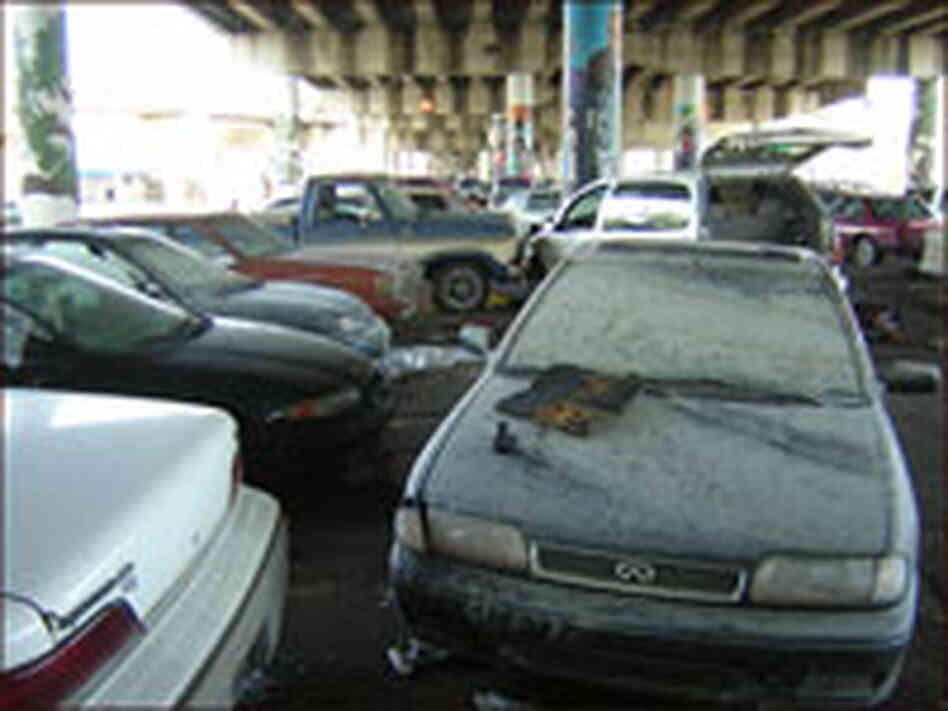 Cars Damaged by Flooding in Hurricane Katrina