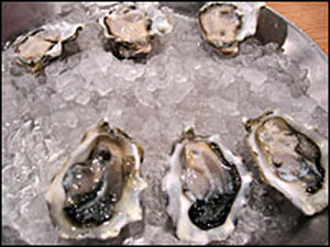 Shucked Penn Cove and Eld Inlet Oysters