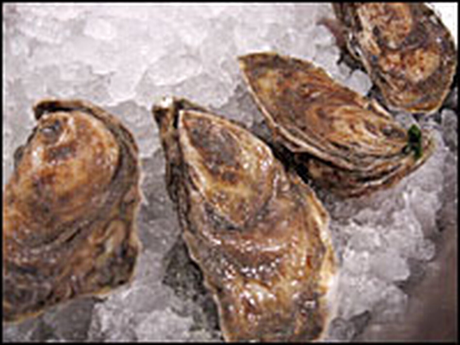 Olde Salts from Virginia are rugged-looking and briny-tasting.
