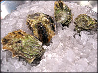 Sexy Penn Cove oysters chill on ice at Hank's Oyster Bar in Alexandria, Va.