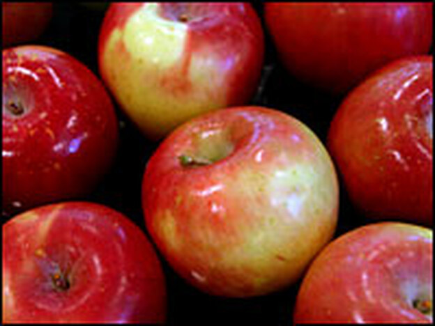 Sweet firm apples such as Fujis work well in baking.