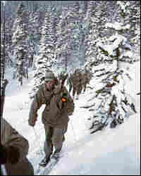 A group of 10th Mountain Division soldiers on skis move uphill over a snowy path near Camp Hale, C