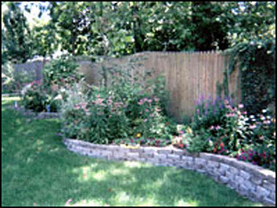 Michele's full garden with the purple loosestrife to the right.