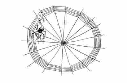 Illustration from Charlotte's Web