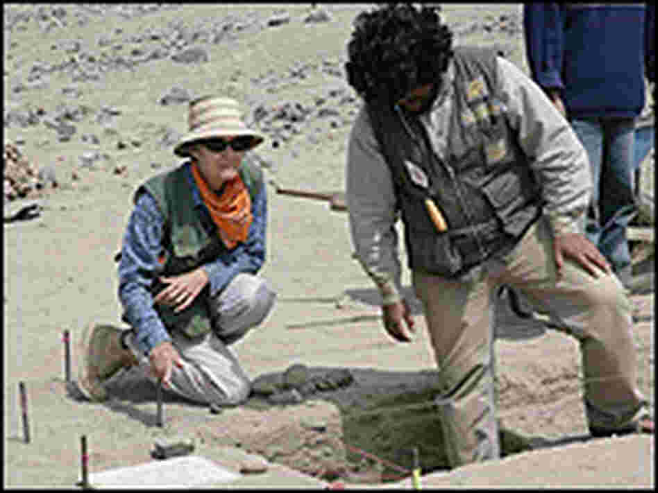 Archaeologist Winifred Creamer works at an excavation in Norte Chico, Peru.