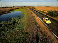 The levee road Highway 4, in California.