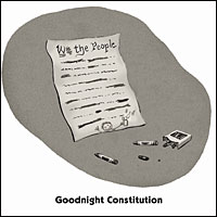 Goodnight Constitution