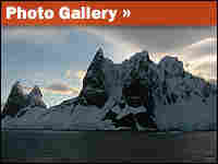 Photo Gallery: Destination Antarctica