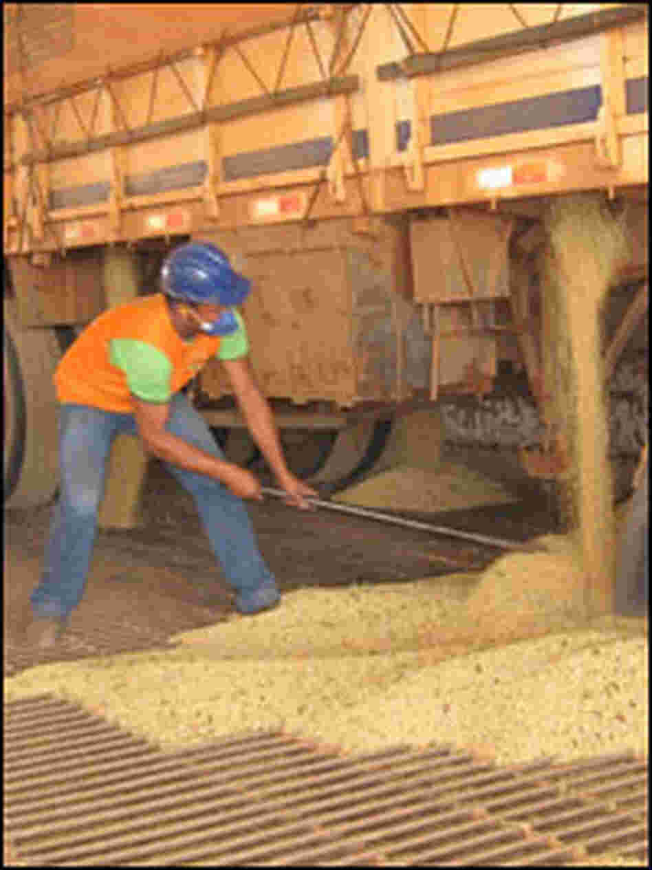 Trucks deliver the soy harvest of Mato Grosso to warehouses.