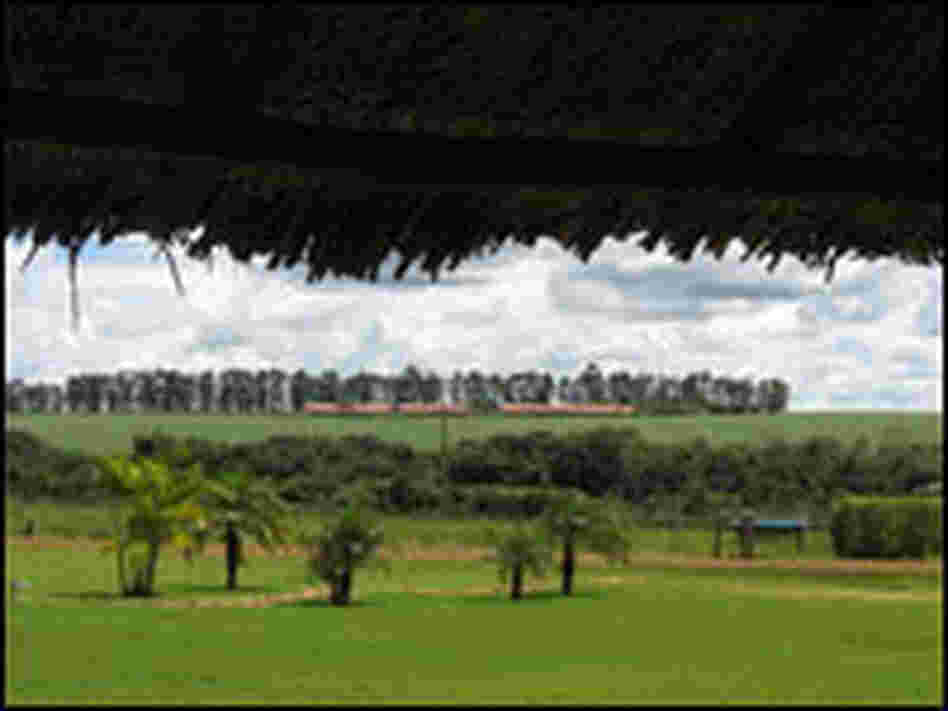 A view from the veranda on the San Antonio farm of soy farmer Erai Maggi.
