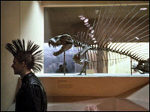 A young man with a mohawk walks in front of a dinosaur skeleton at the Smithsonian.