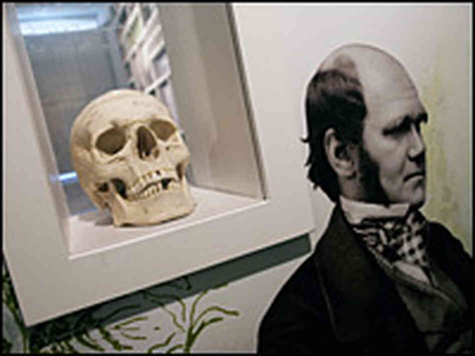 For 40 years, British naturalist Charles Darwin lived at Downe House off the Canterbury Road.