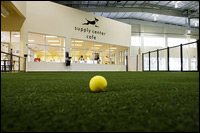 At the Unleashed Indoor Dog Parks in Dallas, dogs can play on 50,000 square feet of articial grass.