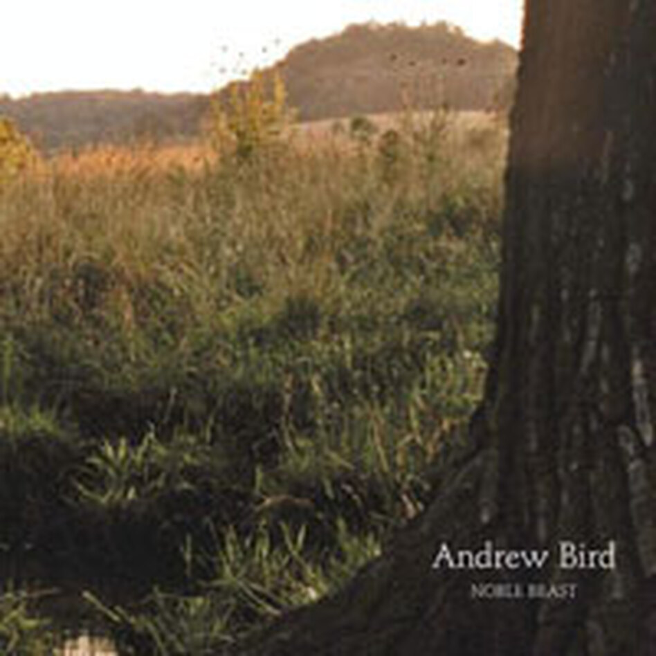 Andrew Bird's album <em>Noble Beast</em>.