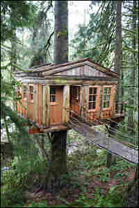 """Pete Nelson, who built this treehouse in Fall City, Wash., calls it a """"love shack."""""""