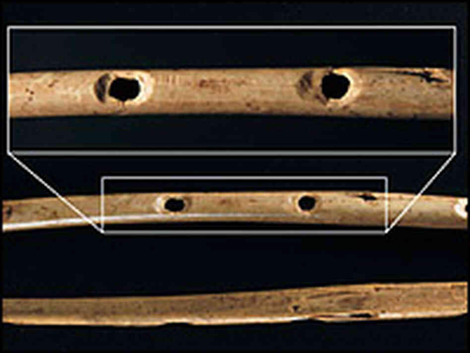 Bone flute from Hohle Fels with enlarged image of finger holes