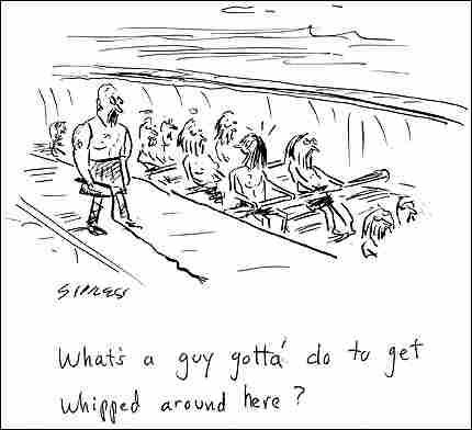 Sipress Cartoon