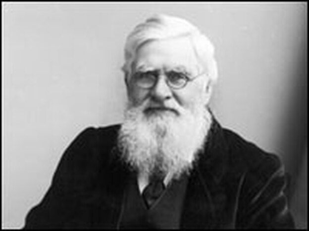 Welsh naturalist Alfred Russel Wallace (1823 - 1913). (Getty Images)