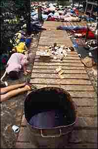 Bodies lay strewn around a vat containing a beverage laced with cyanide