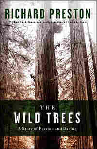 Book cover of 'The Wild Trees' by Richard Preston