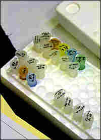Vials of DNA evidence at a crime lab.