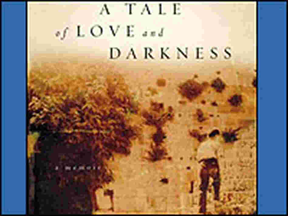 Detail of the cover of 'A Tale of Love and Darkness'