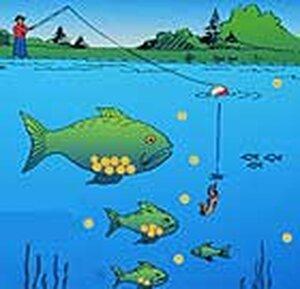 Graphic of mercury contaminated fish
