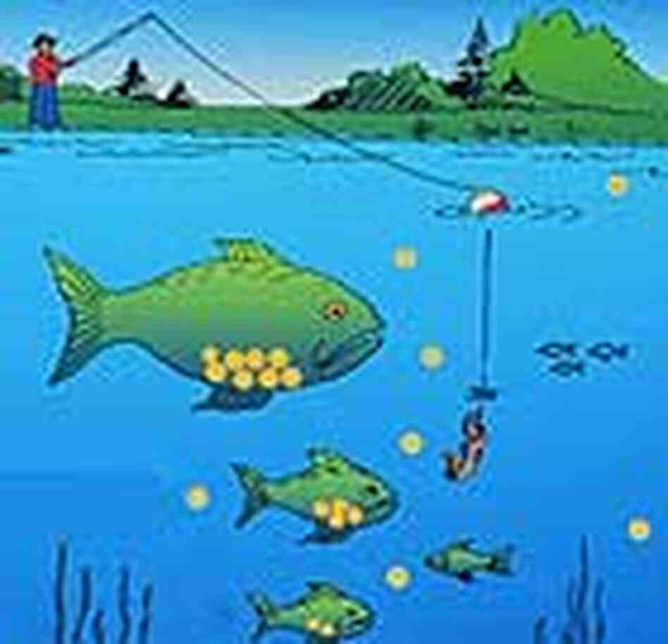 Mercury poisoning again a hot topic npr for Which fish has the most mercury